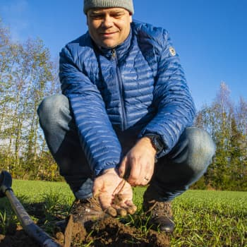 Jari Eerola lähti kokeilemaan uudistavaa viljelytapaa