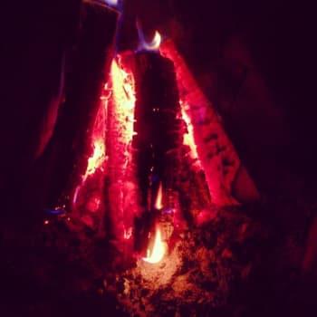 Polttopuukauppa käy kuumana nyt Kainuussa