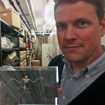 Tutkimus paljastaa lepakoiden elämän mysteereitä!