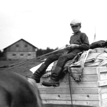 Karelarna och Svenskfinland under och efter kriget - hur togs de emot på svenska områden?