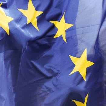 """EU-vaaleissa päätetään unionin suunta - """"Vähintään yhtä jännittävät vaalit tulossa kuin eduskuntavaalit"""""""