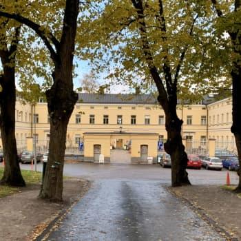 """Organisationer jobbar för att bevara Lappviken som ett vardagsrum för stadsborna - """"Viktigt att ordna allmännyttig verksamhet"""""""