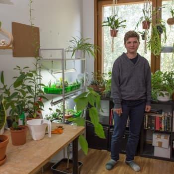 YLE Helsinki: Opiskelijanuorukaisen soluhuone on viherkasvien valtakunta