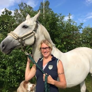 Radio Suomi Kuopio: Katja Ståhl: Tepastelu savolaisella hevostilalla tuo onnea