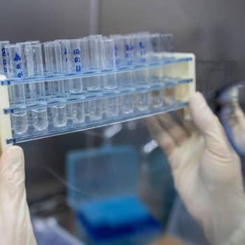 Fördelar med att utveckla och tillverka ett coronavaccin i Finland
