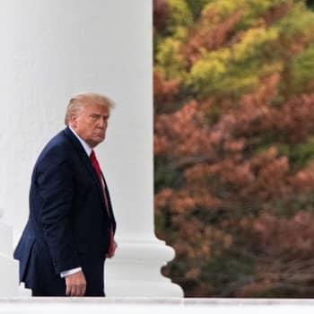 Marknaden tror på Biden: Ekonomi, corona och imagefrågor avgör i USA