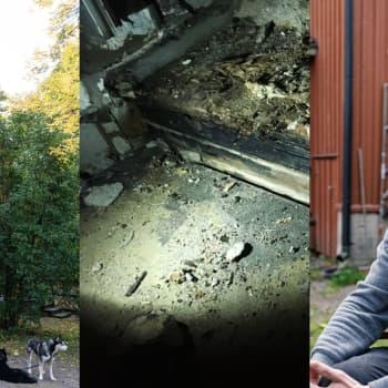 Finlands största hyresvärd ignorerar problem med inneluften