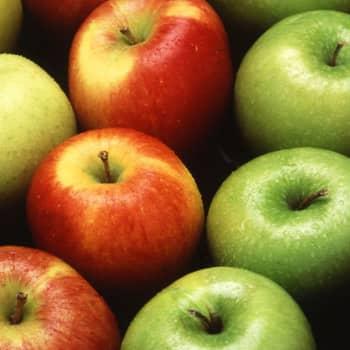 Omenalajikkeiden nimet kanelista astrakaani gyllenkrokiin