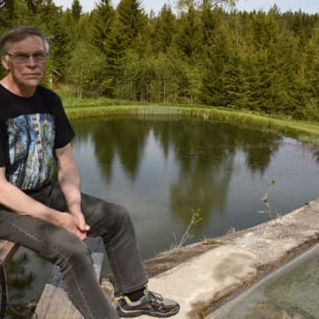 Metsäradio.: Riistakameran kuvissa näkyy pihan harvinaiset vieraat