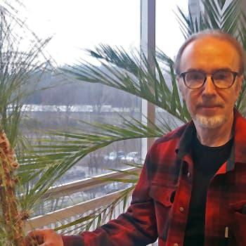 Luonnontilaisten metsien uudistuminen