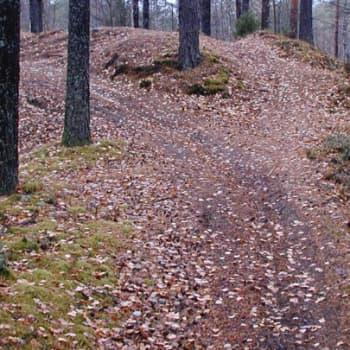 Metsäradio.: Luvaton maastoajo 5.9.2011