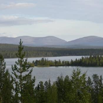 Metsäradio.: Metsäradion kansallispuistoilta