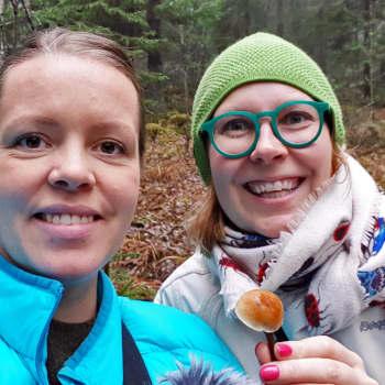 Metsistä löytyy vielä sieniä
