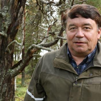 Metsäradio.: Pallas-Yllästunturin huoltotöitä
