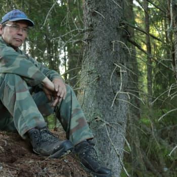 Metsäradio.: Lehtopöllöjä Ikaalisissa