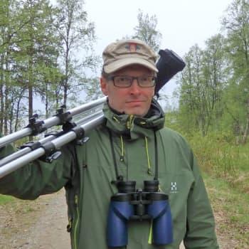 Metsäradio.: Saariselän linturetkeilyä