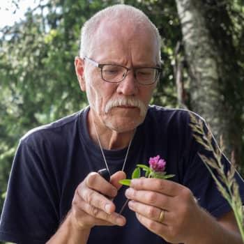 Tuomo Kuitunen kartoitti Luopioisten kasvit