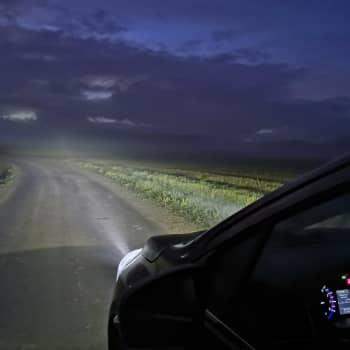 Auton valoissa metsätiellä