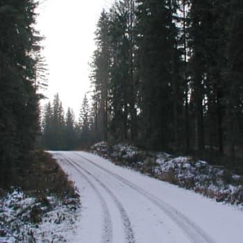 Metsäradio.: Metsäautoteiden parannustyöt 17.10.2011