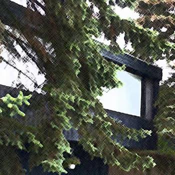 Metsäradio.: Isot pihapuut peittävät asuinrakennuksen