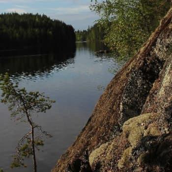 Metsäradio.: Etelä-Konneveden kansallispuistossa
