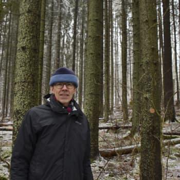 Metsäradio.: Vähäluminen talvi sysikuusikossa
