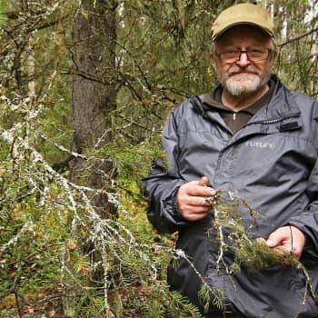 Metsäradio.: Pomokairan poromies Lauri Ukkola