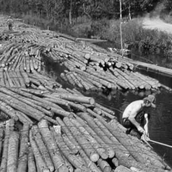 Metsäradio.: Tukkilaiselokuvan käsikirjoitus