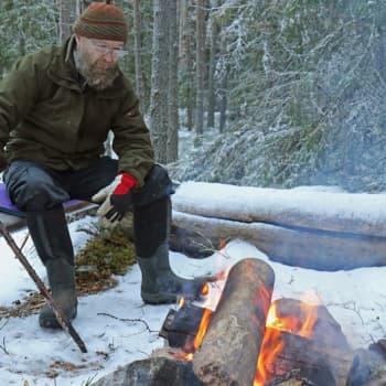 Metsäradio.: Olli Klemola rauhoitti metsänsä