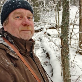 Metsäradio.: Lahtelaisessa tikkametsässä