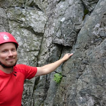 Suomen metsissä kiipeillään muinaisilla laavavirroilla