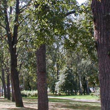 Metsäradio.: Kansalliset kaupunkipuistot