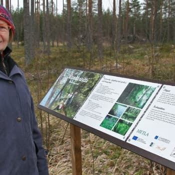 Metsäradio.: Euroopan metsäiset alueet ja elvyttävät polut