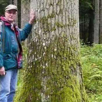 Metsäradio.: Metsähistorian seurojen yhteistyö Pohjoismaissa 27.2.2012