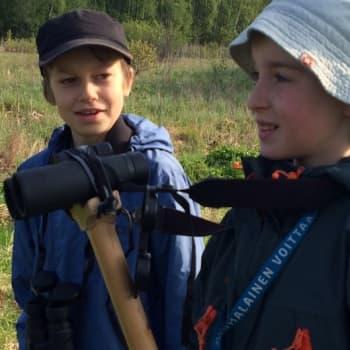 Radio Suomi Tampere: Viidesluokkalaiset lintubongarit kiipeävät torniin jo aamukuudelta