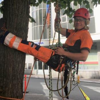 """""""Parhaita ovat vanhat puut, joissa voi juosta"""" - Nikke Myllyselkä kiipeilee puissa työkseen ja huvikseen"""