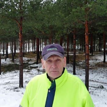YLE Tampere: Vesakkomyrkkyjen nousu ja tuho