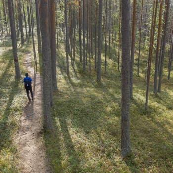 Villi ihminen -kirjan kirjoittanut Riikka Kaihovaara: En puhuisi ihmisen luontosuhteesta - luonto ei tarvitse ihmistä mihinkään