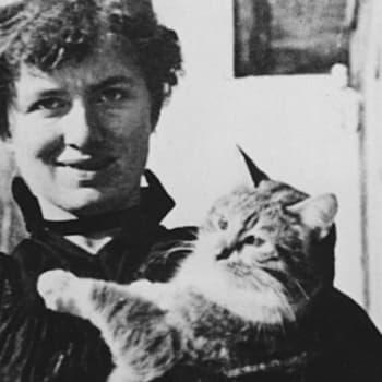 Kultakuume: Uuden ajan nainen sekoitti kirjallisen maailman