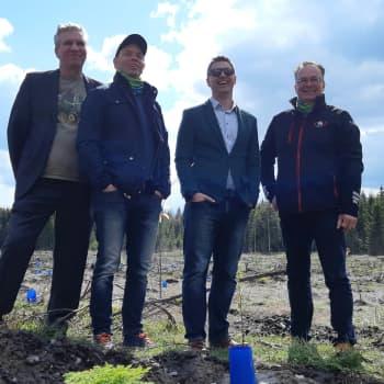 Lähes neljän hehtaarin hiilinielu istutettiin Mikkelissä joutomaalle