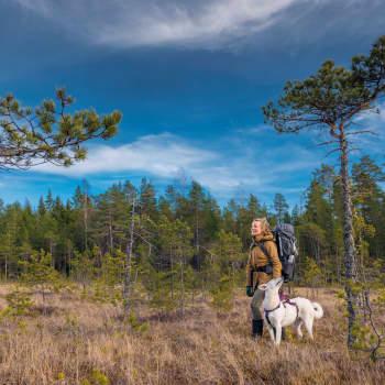 Mia Takula retkeili viikkoja susien jäljillä Pohjois-Karjalan metsissä