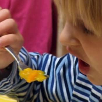 Perheen aika: Jauhelihakastiketta ja perunaa vaiko soijarouhekastiketta ja riisiä? Kasvisruoka korvaa sekaruoan jo monessa perheessä