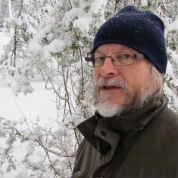 Luonto-Suomi.: Heikki Willamon metsä 28.12.2011