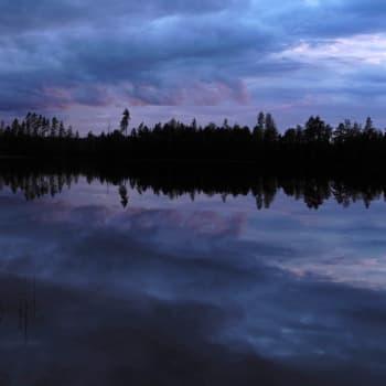 Luonto-Suomi.: Sininen hiljaisuus - luontoelämyksiä hämärän aikaan