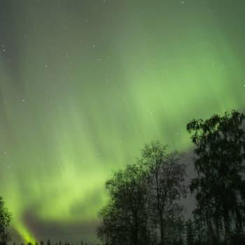 Luonto-Suomi.: Revontuliäänittäjän matkassa 16.2.2011