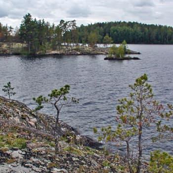 Luonto-Suomi.: Kevättä Vähävuorella