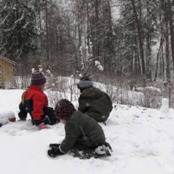 Luonto-Suomi.: Kaupunkiluontoilta
