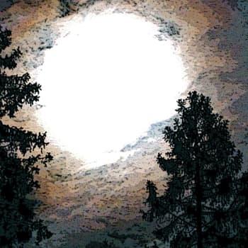 Luonto-Suomi.: Vietä yö ulkona