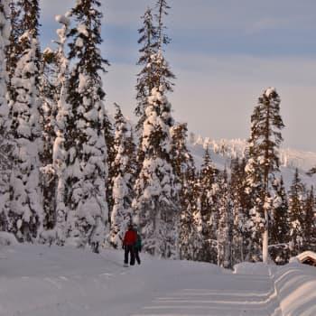 Luonto-Suomen talviretkeilyilta