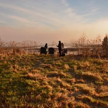 Luonto-Suomi.: Linnunlaulujen aamu